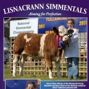 Lisnacrann Simmentals