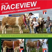 Raceview Simmentals
