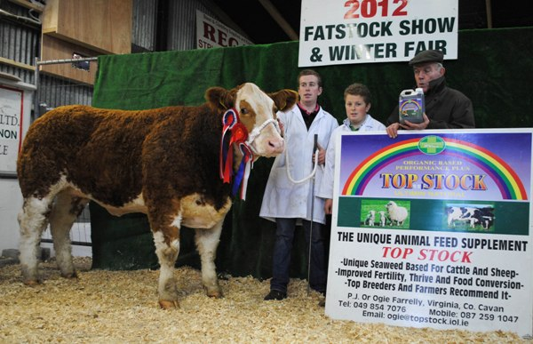 Carrick-On-Shannon Winter Fair 2012 Champion