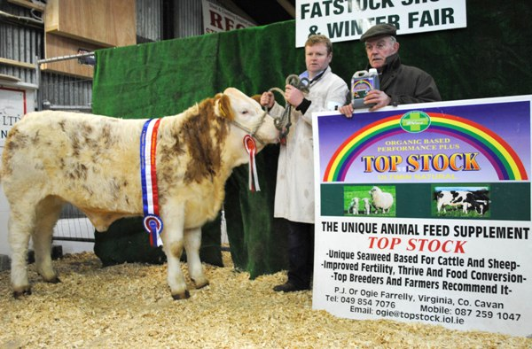 Carrick-On-Shannon Winter Fair 2012 Reserve Champion