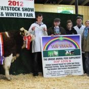 Carrick-On-Shannon Winter Fair 2012 National Weanling Simmental X Bull Calf Champion