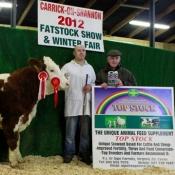 Carrick-On-Shannon Winter Fair 2012 Yearling Simmental X Heifer Class Winner