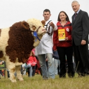 Ploughing Bull Reserve Champion 'Doocastle Ben'
