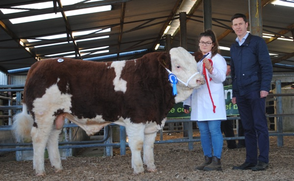 Shiloh-Farm Jockey €3050
