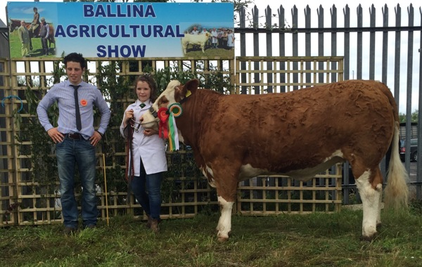 Ballina Reserve Champion for The Oliver Family