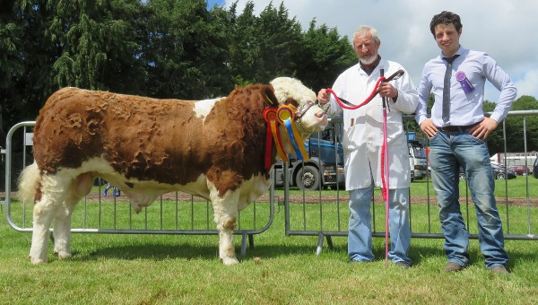 Clonmel Show Reserve Champion 'Towerhill Freaky Friday'