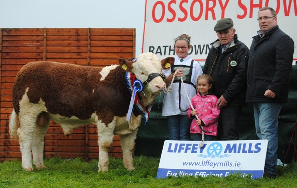 Ossory Reserve Champion & South Eastern Club Weanling Bull Champion 'Shiloh Freedom'