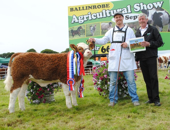 Ballinrobe & Western Club Baby Heifer Calf & Reserve Overall Champion 'Fearna Harmony'