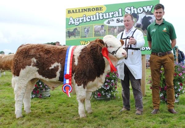 Ballinrobe & Western Club Bull Calf Champion 'Rathlee Hunk'
