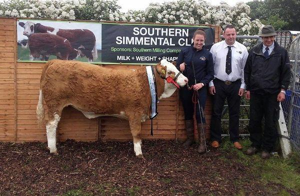 Barryroe'16 Southern Sim Club Weanling Heifer Champ Brideland Geneva