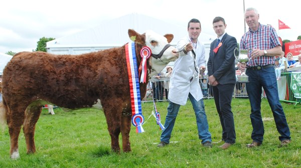 Bonniconlon Show VK Agri Recycling SimX Nat Heifer Champ