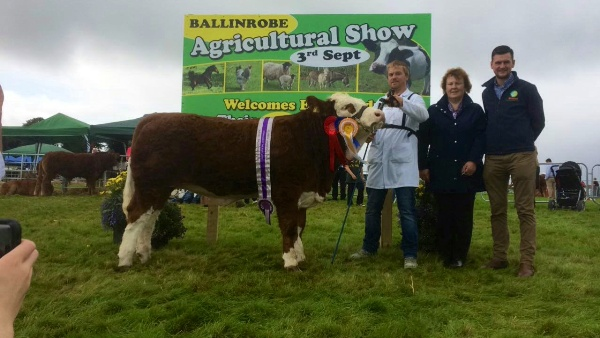 Ballinrobe 2017 Western Club Yearling Heifer Champion sponsored by Aurivo