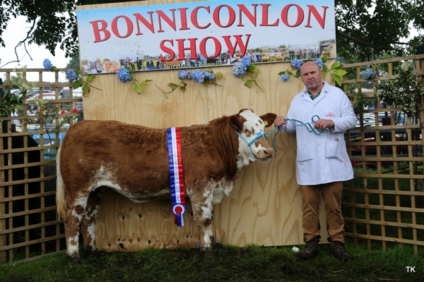Bonniconlon 2017 VK Agri Recycling Simmental X Yearling