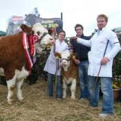Athlone 2011 Champion 'Fearna Tiffany'