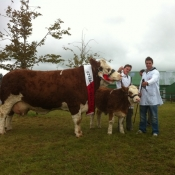 Claremorris 2011 Champion 'Fearna Tiffany'