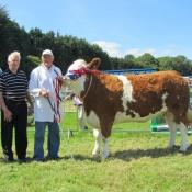 Clonmel 2011 Champion 'Raceview Abbey Princess'