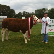 Grange 2011 Champion 'Seepa Aster'