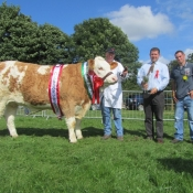 Cappamore 2012 Overall Champ 'Raceview Blanche Matilda'
