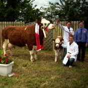 Riverstown 2012 Champion & Overall Breed Champion \'Fearna Tiffany\'
