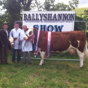 Ballyshannon 2013 Overall Champion & Interbreed Champion 'Seepa Aster'