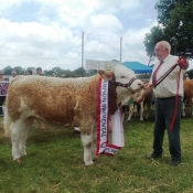 Charleville 2013 Male Champion \'Seaview Denver\'