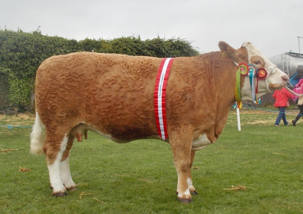 Bandon Show Female Overall Champ Clonagh Willow