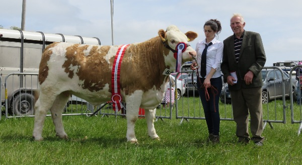 Midleton Show Champion 'Clonagh Delightly Fabulous'