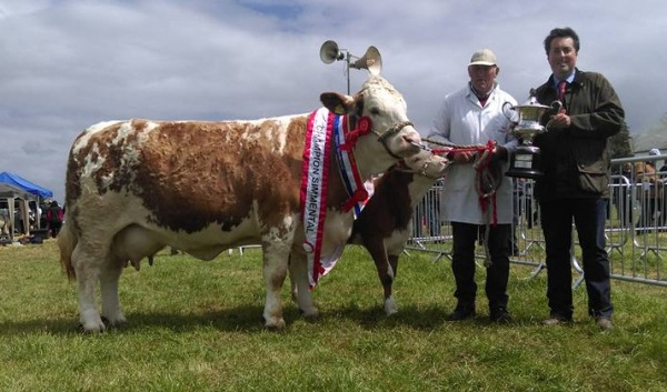 Tinahely Champion 'Clonagh Absolutely Fabulous'