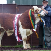 Barryroe Champion, Interbreed Calf &Weanling Bull Champion 'Carbery Fintona'