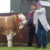 Barryroe Yearling Bull Champion 'Slieveroe Frontline ET'
