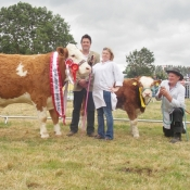Charleville Show Female Champion 'Raceview Classy Terona'