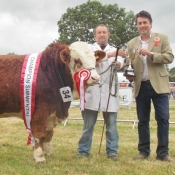 Charleville Show Male Champion 'Dripsey Frankie'