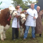 Claremorris Show Champion
