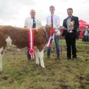 Clonakilty Show Champion 'Seaview Gabby'