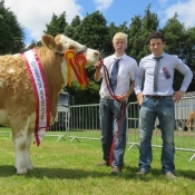 Clonmel Show Champion 'Clonagh Dora The Explorer'