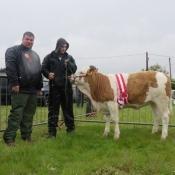 Kingdom County Fair Champion 'Mohona Freckle'