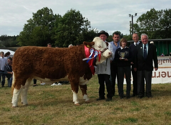 Ballygarvan Show Overall Champion & Interbreed Champion 'Raceview Faustina Wynty'