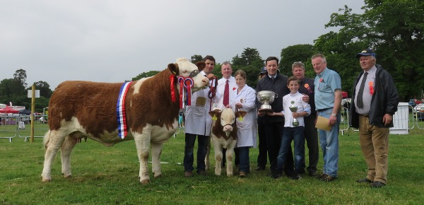 Co Louth16 Champion & Interbreed Champion 'Kilbride Farm Eunice 168E'