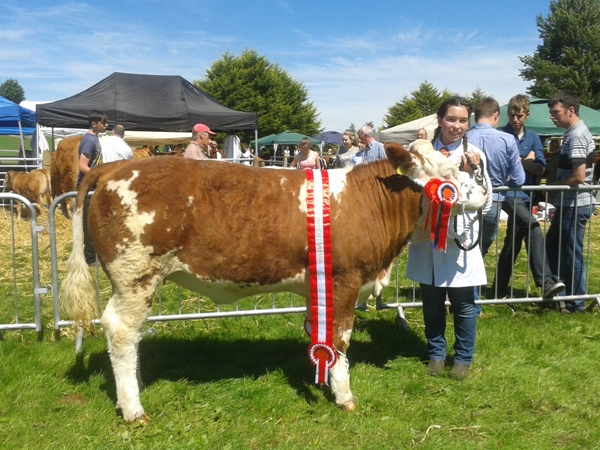 Oldcastle Champ Quitrent Gisella