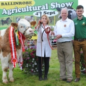 Ballinrobe Show Club Yearling Champion & Overall Simmmental Champion 'Rathlee G-Man'