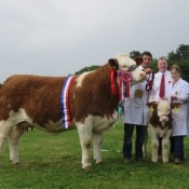 Co Louth Show Champion & Interbreed Champion 'Kilbride Farm Eunice 168E'
