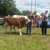 Dunmanway Show Overall Champion 'Clonagh Delightfully Fabulous'