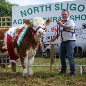 Grange Show Champion & Interbreed Champion 'Tawley Gretta'