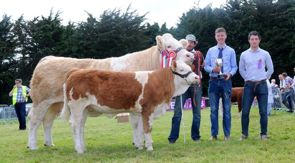 Clonmel 2017 Champion & Reserve Interbreed Champion 'Clonagh Darling Eyes'