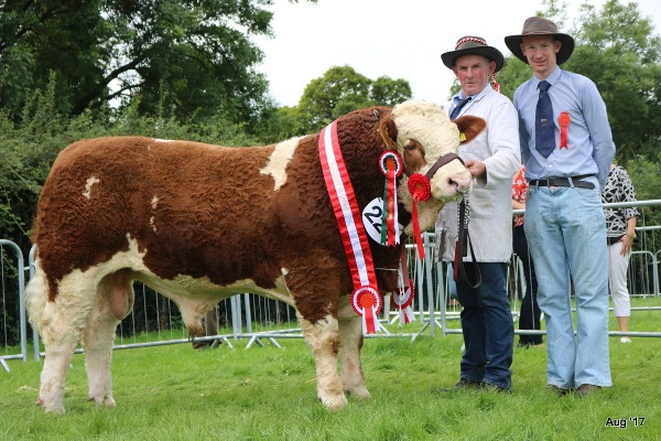 Limerick 2017 Champion & Interbreed Autumn Calf Champion 'Raceview Herman'