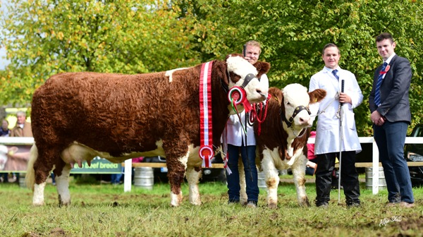 Strokestown 2017 Overall Champion 'Fearna Faith'