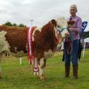Ballygarvan 2017 Champion 'Dripsey Honey Heart'