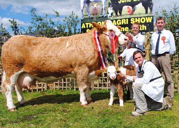 Athlone Show Champion 'Fearna Vienna'
