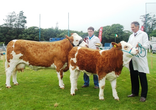 Barryroe Interbreed Female Champion 'Corbally Vintage Katie'