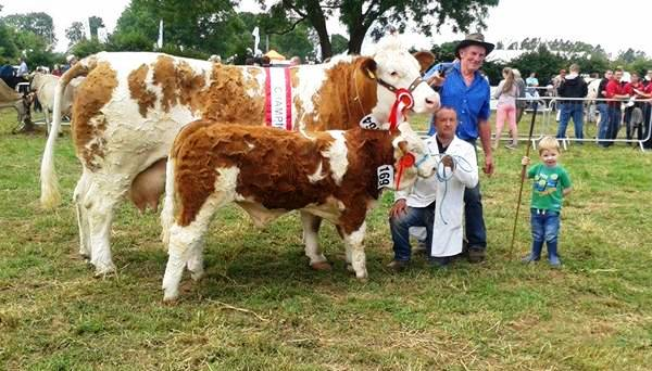 Charleville Show Female Champion 'Raceview Alicia Kim'